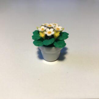 Hvide og gule blomster i hvid keramik urtepotte