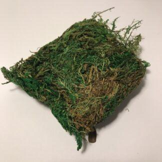 Dekorationspynt mos